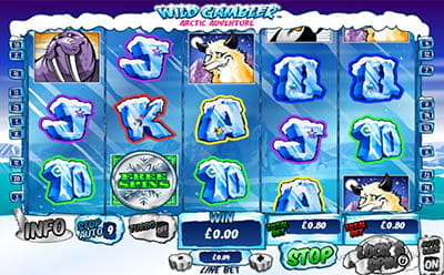 Wild Gambler Arctic Adventure Slot Gameplay
